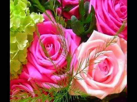 Belles fleurs youtube for Les plus belles plantes artificielles