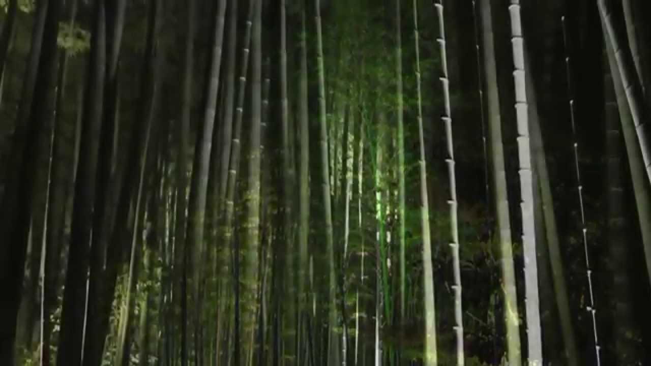Ancient japanese zen gardens - Japanese Gardens Of Nara The Ancient Capital Video Postcard Zen Garden Lighting Design