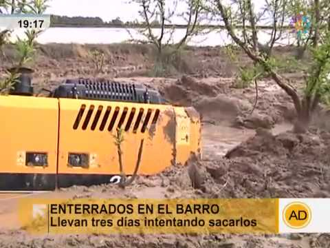 Siete tractores enterrados