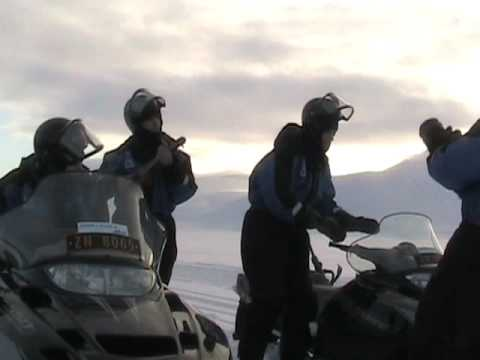 """Real Ones live in the Arctic: """"Here Comes the Sun"""""""