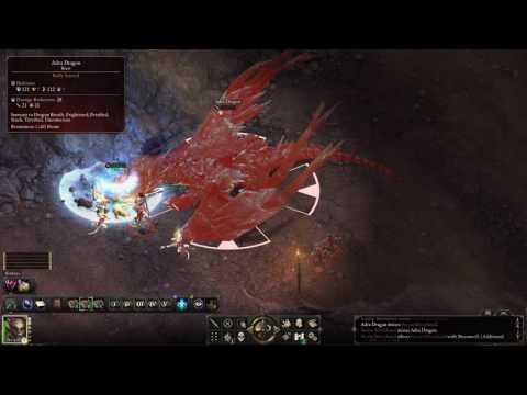 Pillars of Eternity [3.05] - Solo Chanter vs. Adra Dragon