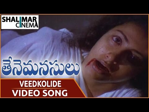 Thene Manasulu Movie || Veedkolide Video Song || Krishna, Jaya Prada, Suhasini || Shalimarcinema