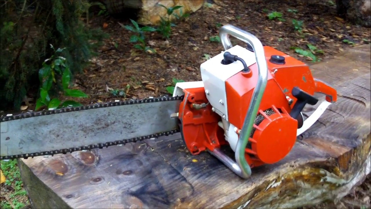 Chain Saws At Sears Saw Palmetto For Bph