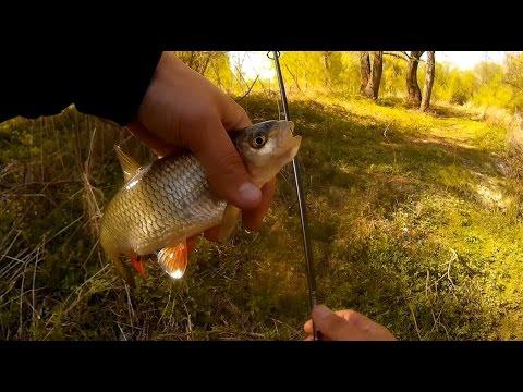 Ловля голавля в мае на малой речке. Разведка в черте города
