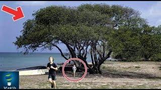 إذا رأيت هذ الشجرة أهرب فوراً وانج بحياتك..!!