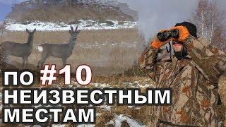 #10. Видео-Охота на кабана и косулю. 17 февраля 2018г.