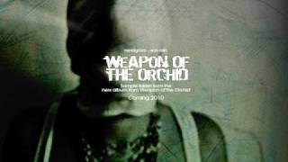 Weapon of the Orchid - New Album Teaser