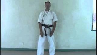 Uechi Ryu's Hojo Undo