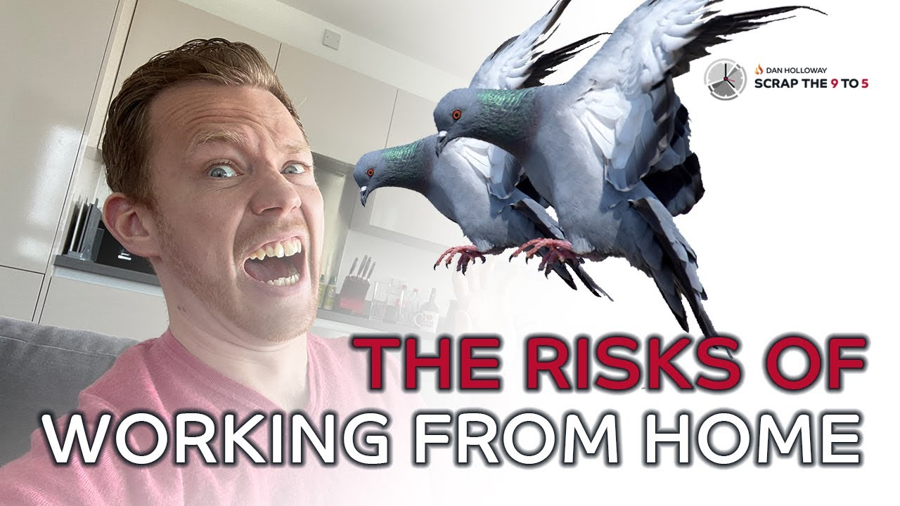 WARNING! Don't get attacked by pigeons in your living room!