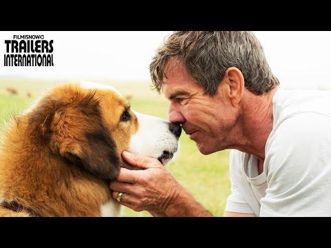 Trailer do filme Quatro Vidas de um Cachorro