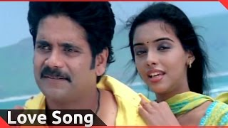 Love Song Of The Day 101 || Telugu Movies Love Video Songs