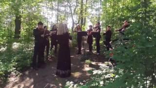 Stratford Summer Music -  Bach Walk (full group) #2
