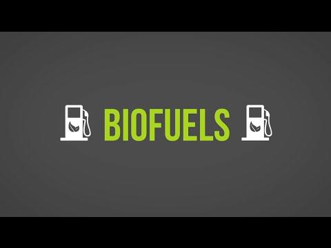 Biofuels 101