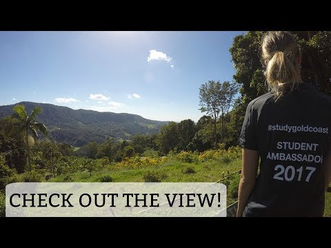 FREEMAN'S ORGANIC FARM - GOLD COAST - QLD - AUSTRALIA || Babbling Brook