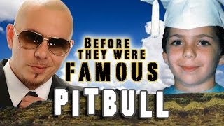 PITBULL - Before They Were Famous