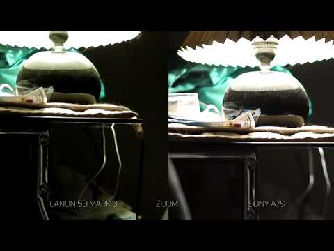 Canon EOS 5D Mark III Vs. SONY A7S Video Test