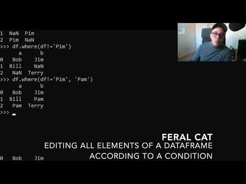 Editing All Elements of a DataFrame According to a Condition