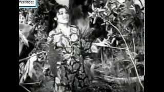 Video OST Pontianak Gua Musang 1964 - Petikan lagu 1 download MP3, 3GP, MP4, WEBM, AVI, FLV Maret 2018