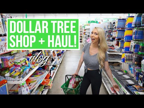 HUGE DOLLAR TREE SHOP WITH ME + HAUL!