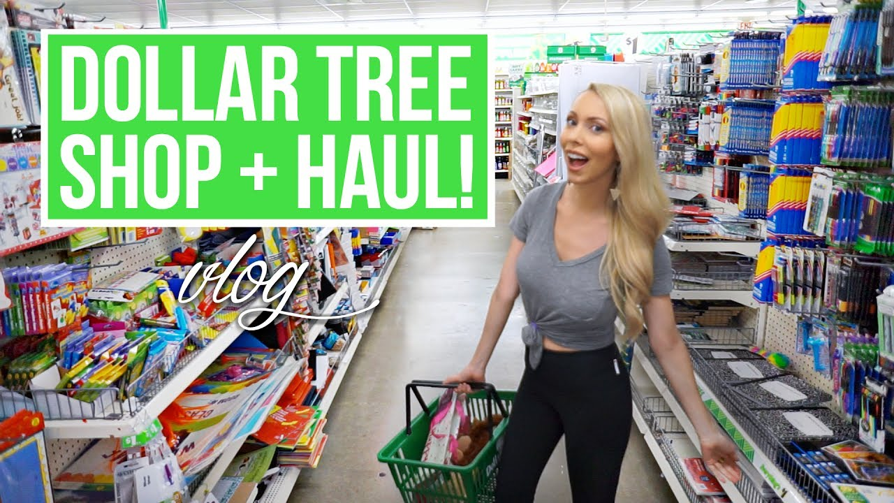 Huge Dollar Tree Shop With Me Haul
