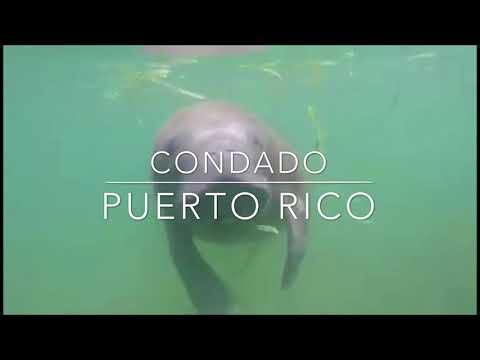 Condado Lagoon Puerto Rico Travel Vacation