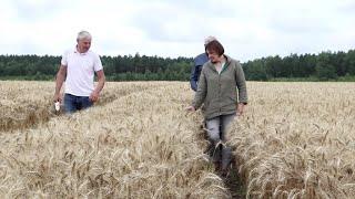 Ūkininkas atskleidė, kaip jam pavyko užsiauginti puikų šių metų derlių