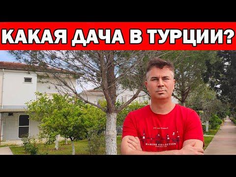 КАКИЕ ДАЧИ В