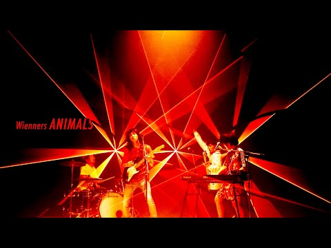 Wienners Digital Single『ANIMALS』Music Video