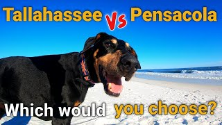 Should we visit Tallahassee, St Marks or Pensacola Beach?