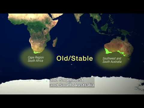 Shaping Life: The Geology of Mediterranean-Climate Ecosystems (Accessible Preview)
