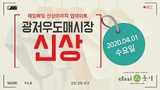 20200401 광저우 싸허도매시장 구매대행 신상