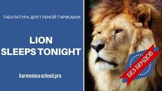 Табулатура для губной гармошки The Lions sleeps tonight