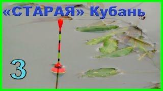 рыбалка, Старое русло реки Кубань.