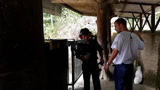 Вьетнам Туннели Ку Чи стрельба из оружия