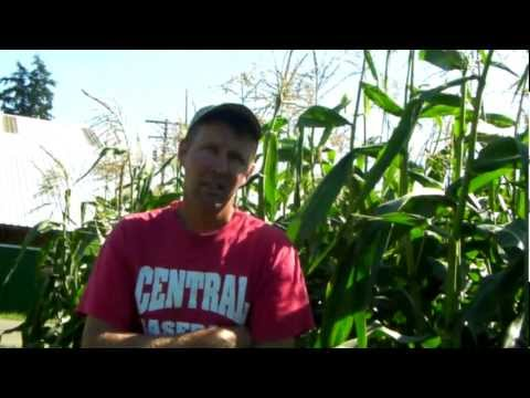 Jon Bansen, We can feed the world organic.MP4