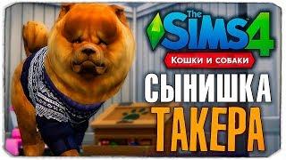 СЫНИШКА ТАКЕРА - The Sims 4