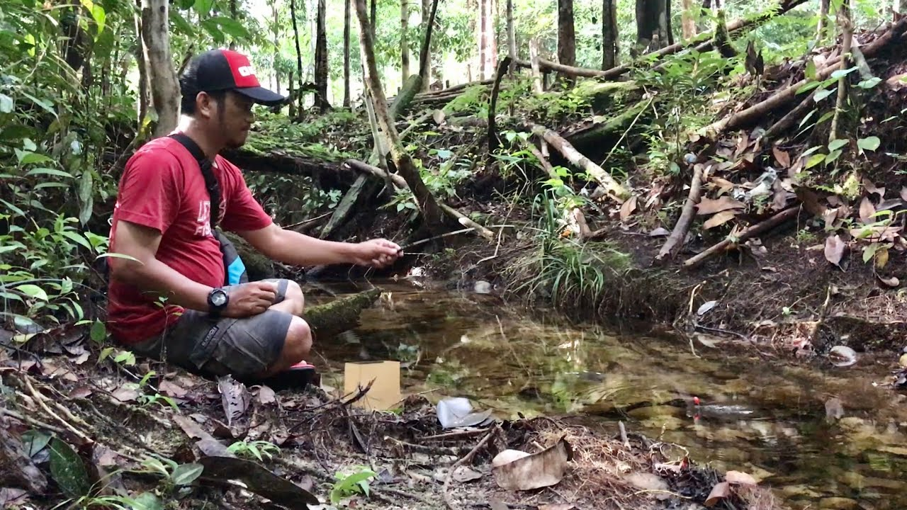 MICRO FISHING THERAPY in a TINY CREEK