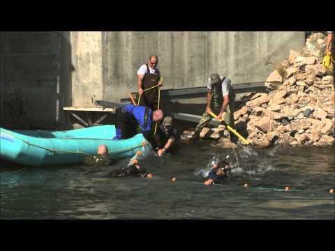 Idaho Fish & Game Sockeye Roundup
