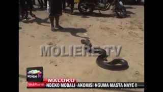 MALUKU : NDEKO MOBALI AKOMISI NGUMA MASTA NAYE !!