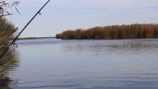 Fishing. Kazakhstan. Lake Balkhash. Рыбалка У Эвальда. Октябрь. Балхаш. Казахстан