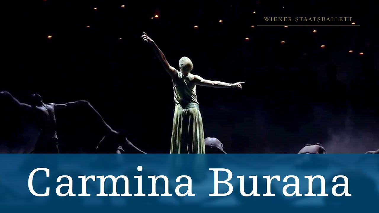 Bildergebnis für volksoper carmina burana