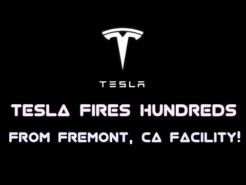 Tesla fires hundreds from Fremont, CA facility!