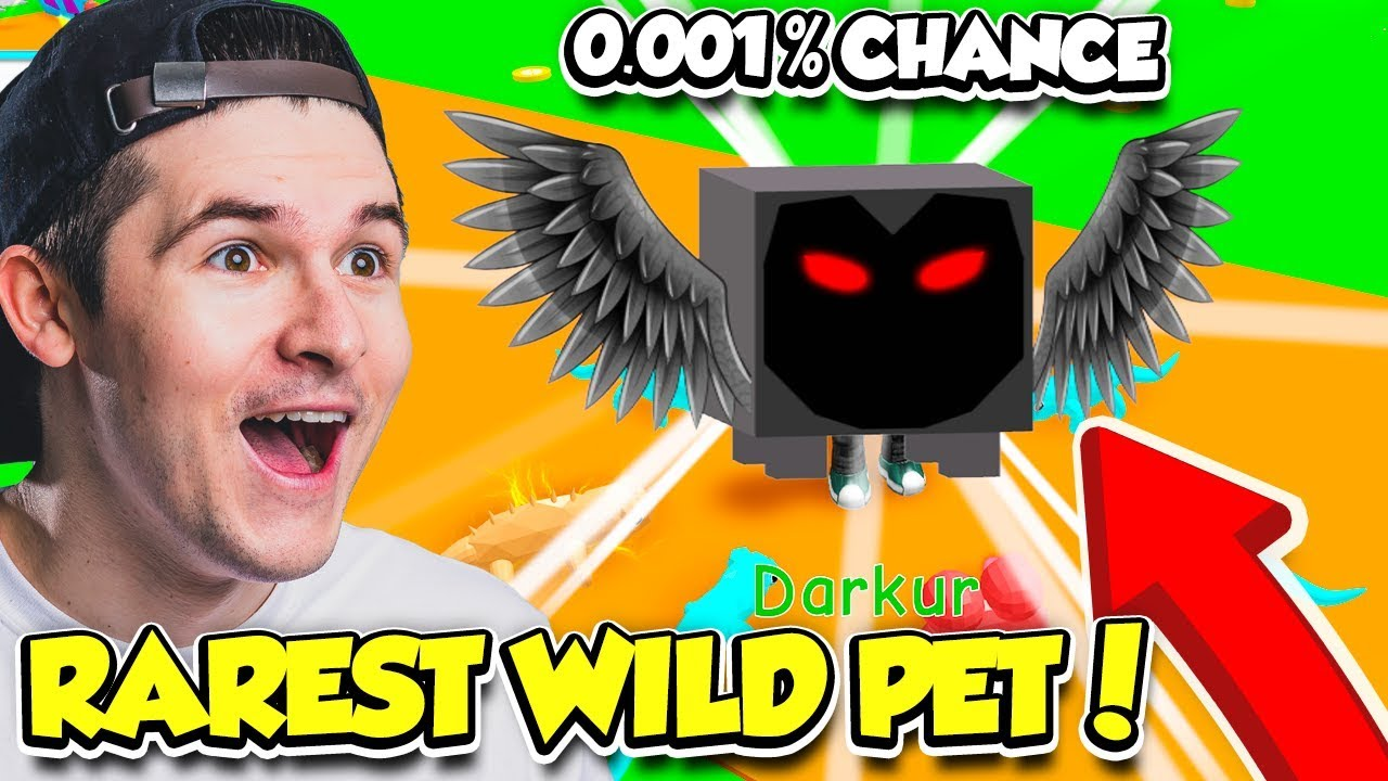 I FOUND THE RAREST WILD PET IN PET TRAINER!! *0.001% CHANCE* (Roblox)