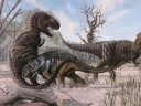 Tribute to Edmontonia.