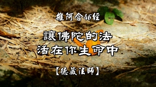 雜阿含0046經(1版)6-2讓佛陀的法活在你生命中[德藏法師]