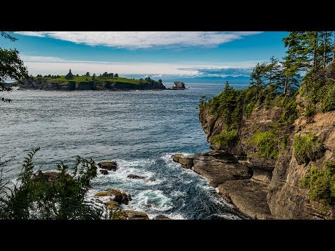 WHALE WATCHING from Cape Flattery! | Cape Flattery Trail