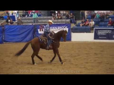 2016 Thoroughbred Makeover Working Ranch Winner Russell Littlefield and Trick Roper