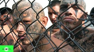 Top 10 Pandillas Más Peligrosas Del Mundo