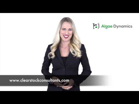 ADYNF Clear Stock investor introduction