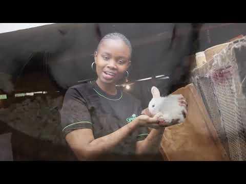 Maureen Wanyaga  The Rabbit Farmer